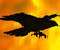 Crow In Hell 1